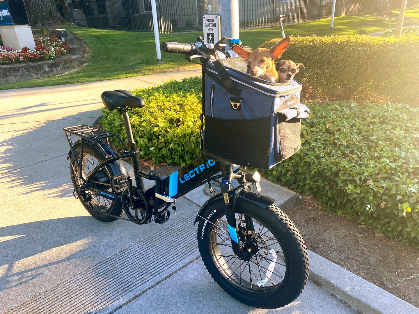 """Lectric XP 2.0 Step Through electric bike with 20"""" wheels"""